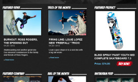 Wordpress Theme Design Skateboard